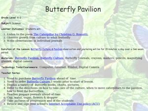 Butterfly Pavilion Lesson Plan