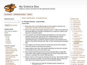 Protein Factory Lesson Plan