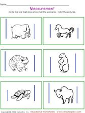 Measurement: Height Worksheet