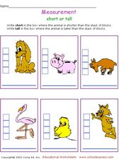 Measurement: Short or Tall? Worksheet