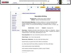 Descriptive Writing Lesson Plan