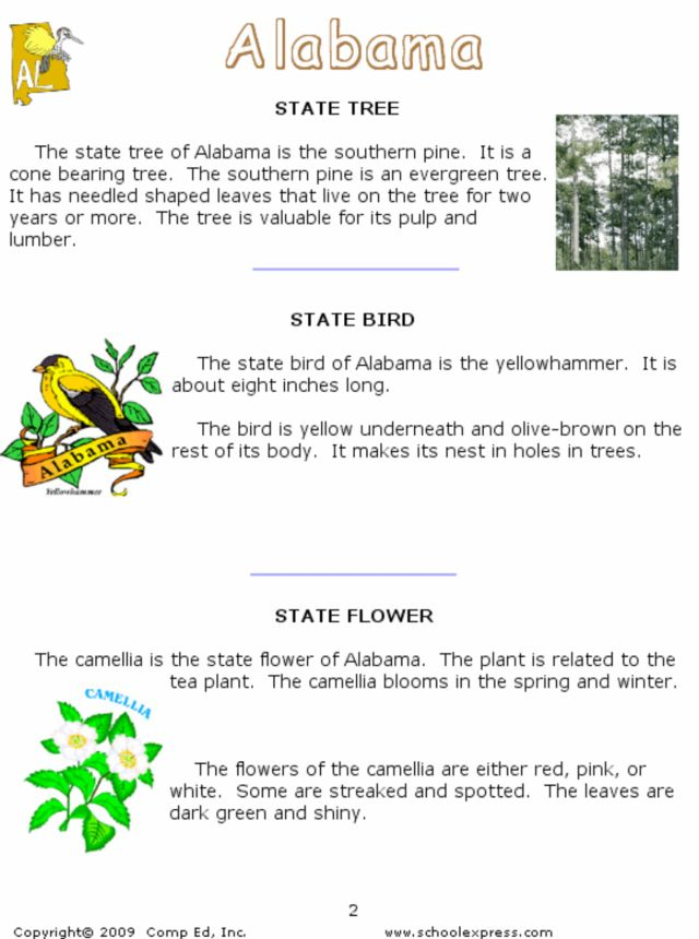 Alabama: State Tree, Bird and Flower Worksheet