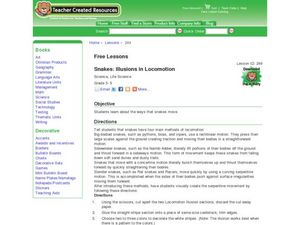 Snakes: Illusions in Locomotion Lesson Plan