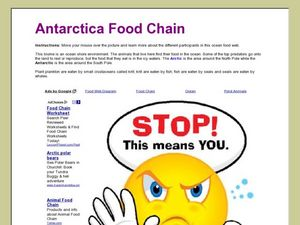 Antarctica Food Chain Lesson Plan