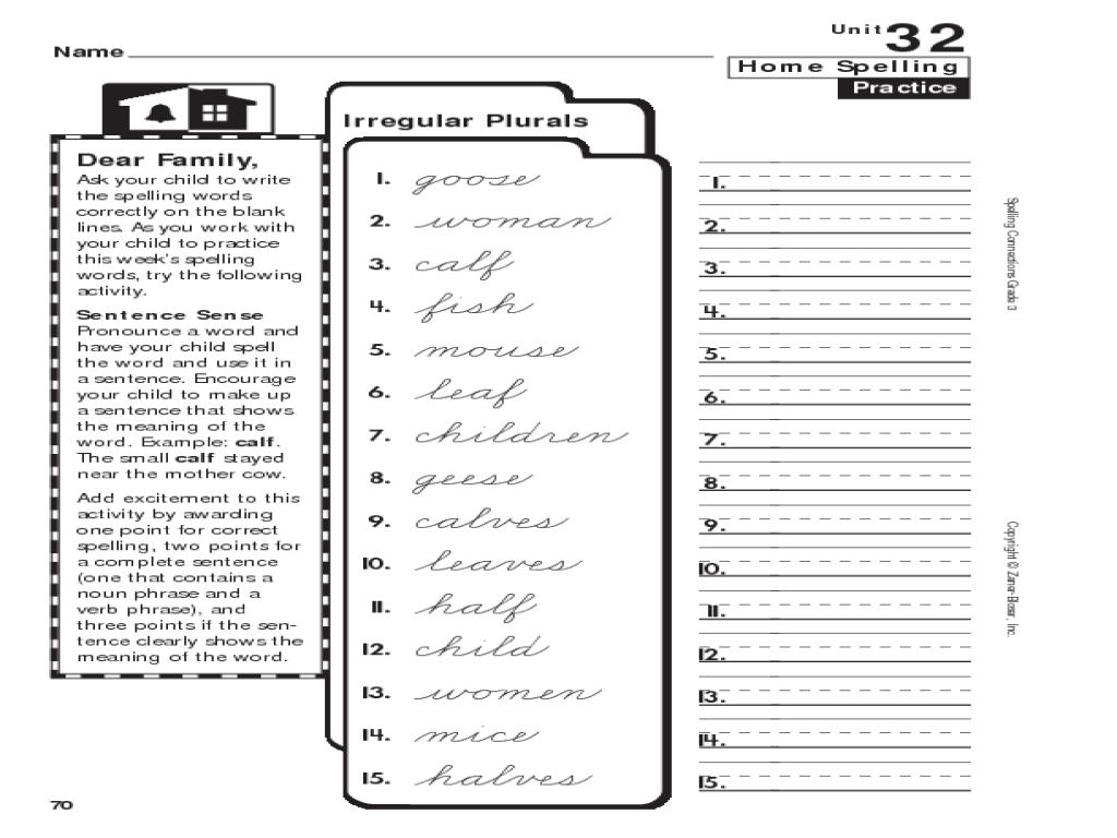 Home Spelling Practice: Grade 3: Irregular Plurals