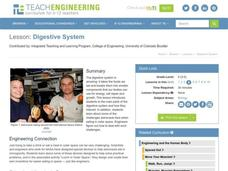 Digestive System Lesson Plan