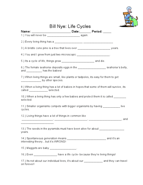 Bill Nye Quot Life Cycles Quot Worksheet For 3rd 4th Grade