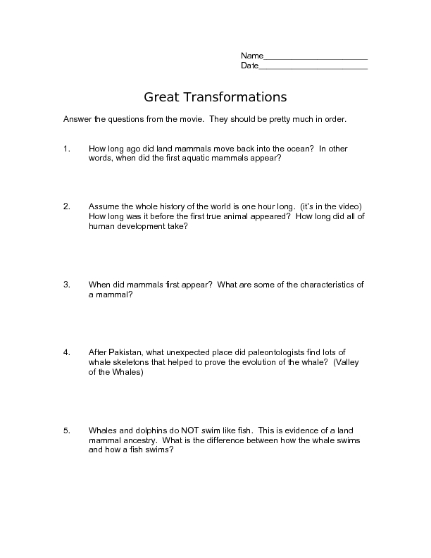 Great Transformations Worksheet For 4th 5th Grade Lesson Planet