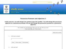 Possessive Pronouns and Adjectives 3 Interactive