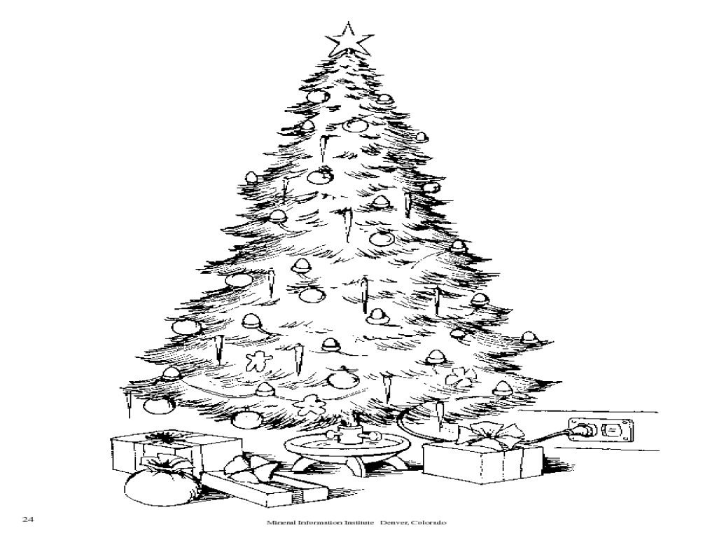 Natural Resources and Your Christmas Tree Worksheet for