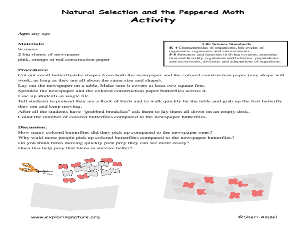 Natural Selection And The Peppered Moth Lesson Plan For