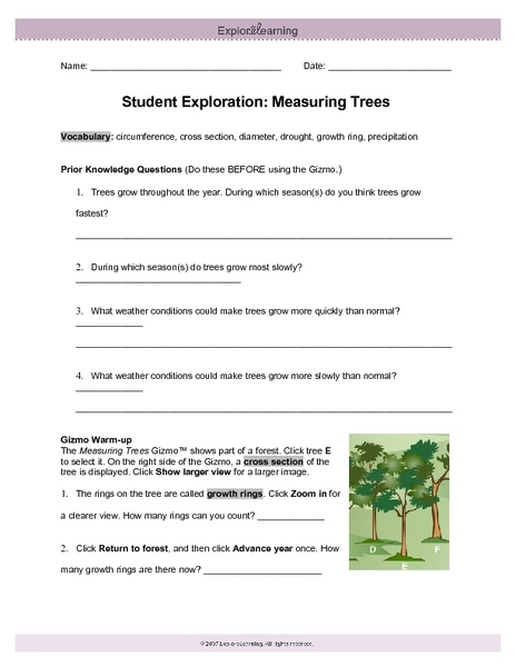 Student Exploration Measuring Trees Worksheet For 4th 6th