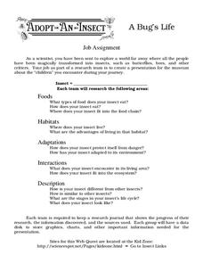 A Bug's Life Worksheet