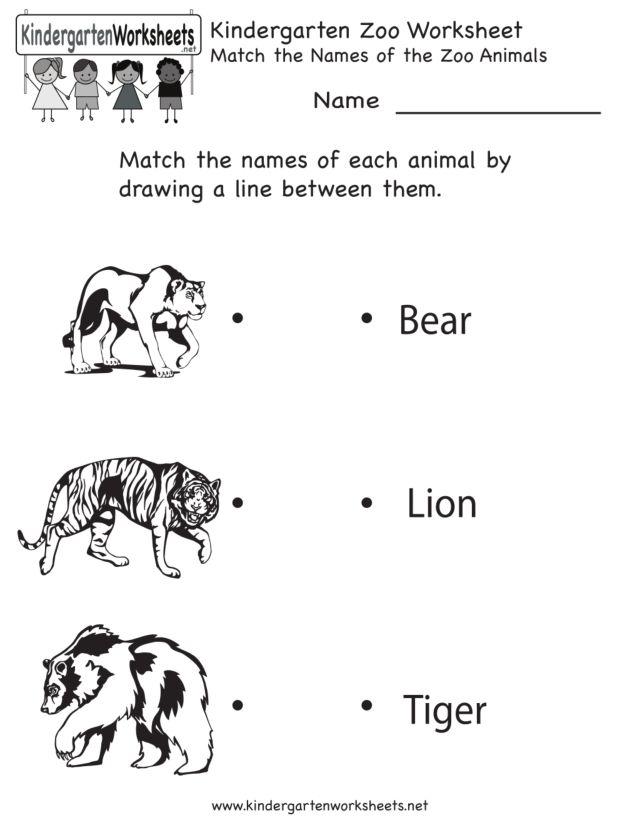 kindergarten zoo worksheet worksheet for kindergarten. Black Bedroom Furniture Sets. Home Design Ideas