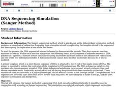 DNA Sequencing Simulation Lesson Plan