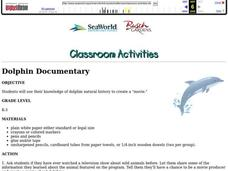 Dolphin Documentary Lesson Plan