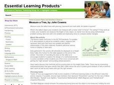 Measure a Tree Lesson Plan