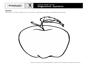 Human Body Series - Digestive System Activities & Project