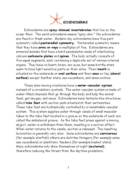 Echinoderms Worksheet for 7th - 10th Grade | Lesson Planet