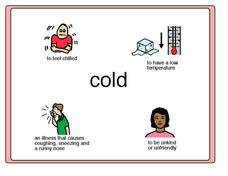 Words with Many Meanings:  Cold Worksheet