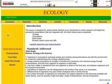 Ecology Lesson Plan