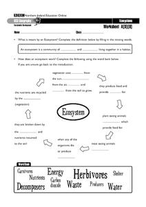 Ecosystems Worksheet