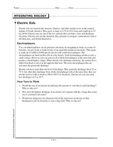 Electric Eels Worksheet