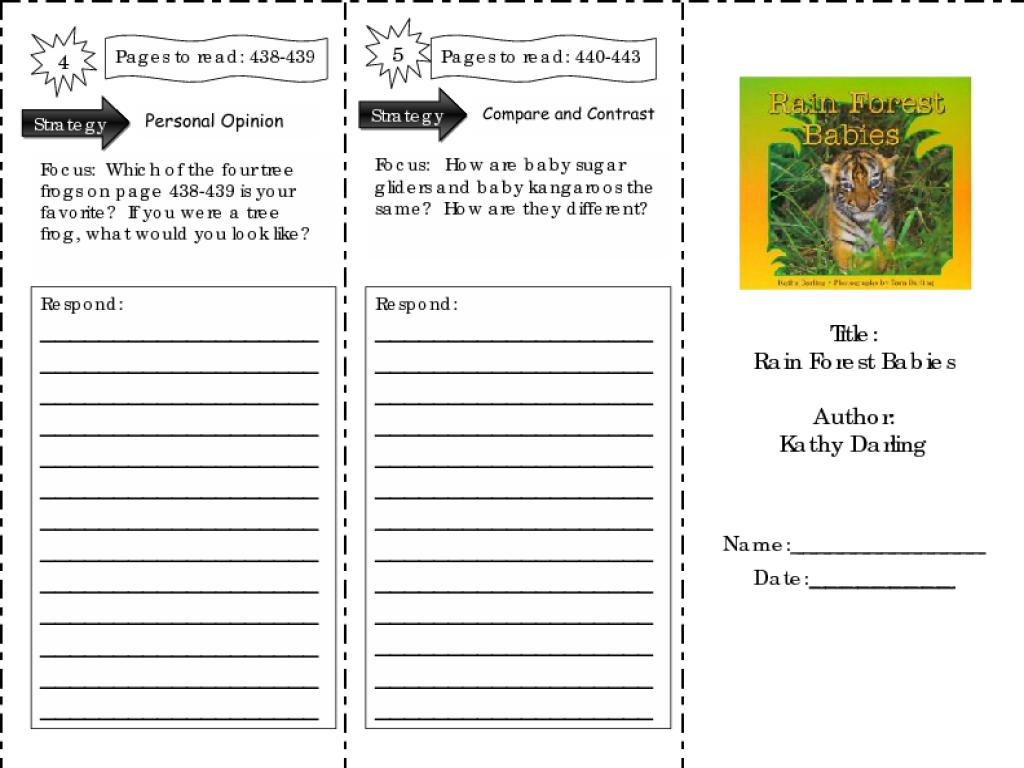 - Rain Forest Babies: Comprehension Skills Worksheet For 2nd Grade