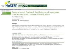 Compare and Contrast deciduous and evergreen tree leaves to aid in tree identification Activities & Project