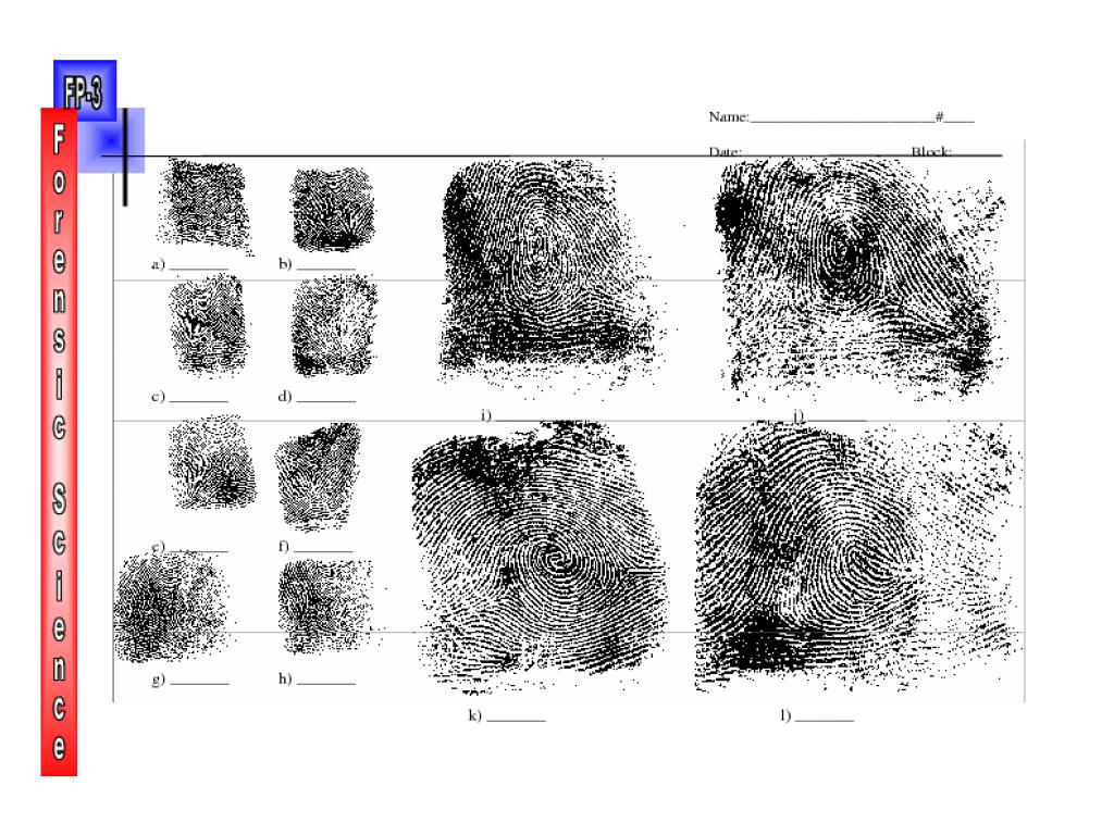 Fingerprint Identification 3 Worksheet For 10th 12th Grade Lesson Planet