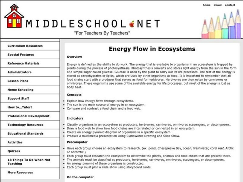 Energy Flow in Ecosystems Lesson Plan
