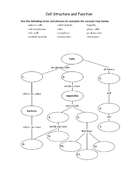 Cell Structure and Function 7th - 10th Grade Worksheet | Lesson Planet