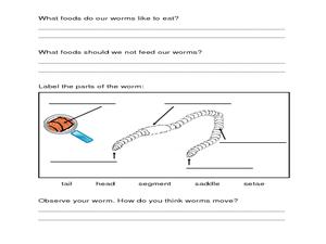 worm composting lesson plan for 2nd grade lesson planet. Black Bedroom Furniture Sets. Home Design Ideas