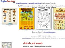 Animals and Sounds Interactive