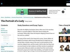 Portrait of a lady essay topics
