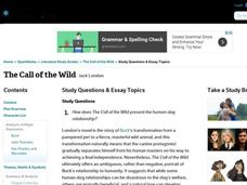essay on the call of the wild by jack london Essays from bookrags provide great ideas for the call of the wild essays and paper topics like essay view this student essay about the call of the wild.