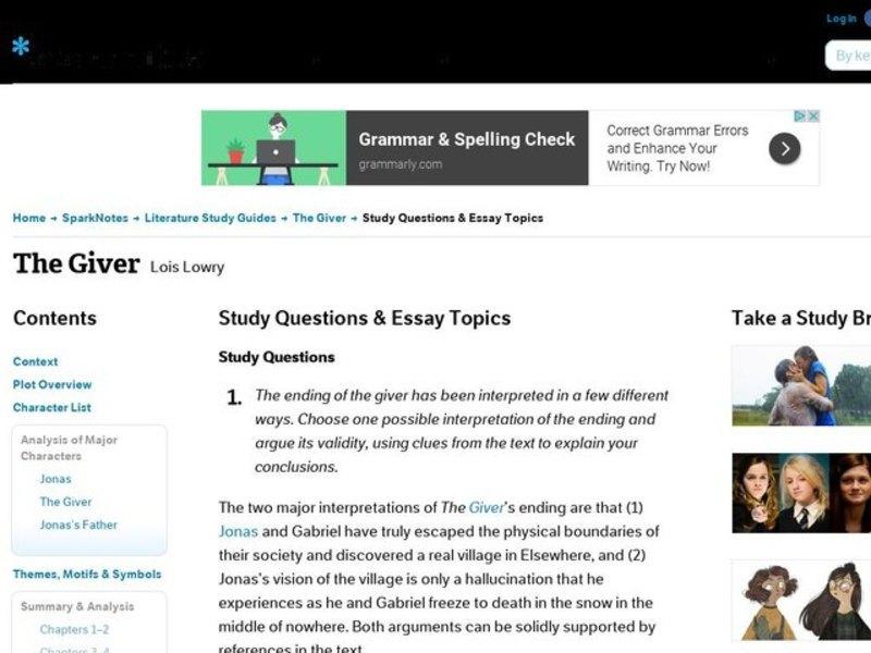 The giver essay topics