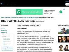 i know why the caged bird sings chapter 25