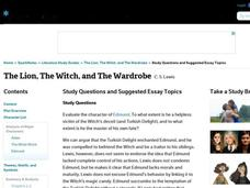 essay questions on the lion the witch and the wardrobe Studying for the lion, the witch, and the wardrobe we have tons of study  questions for you here, all completely free.
