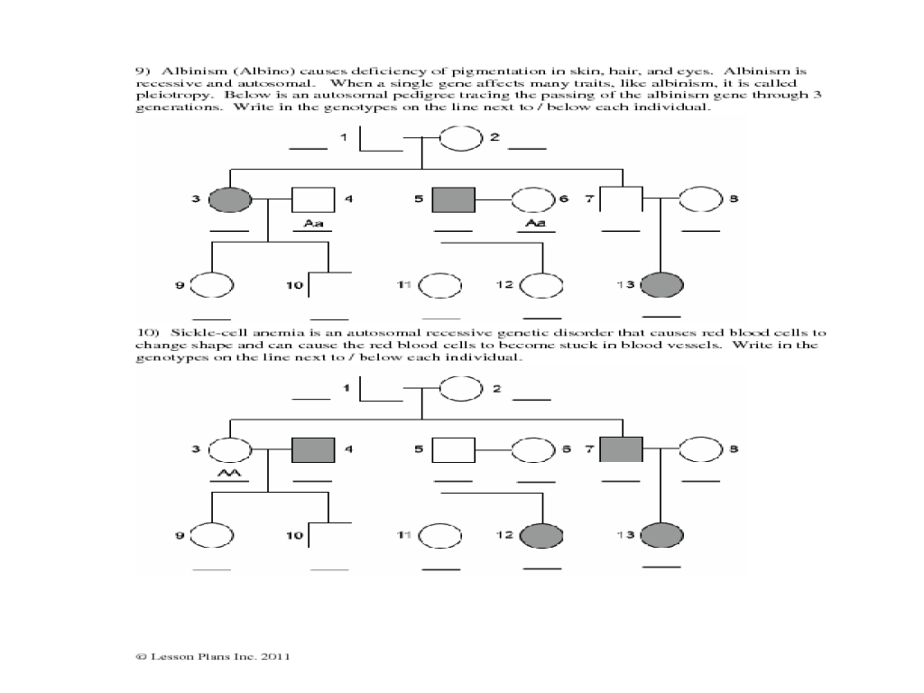 Autosomal Pedigrees Worksheet Worksheet for 7th - 10th Grade ...