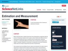 Estimation and Measurement Lesson Plan