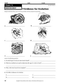 Evidence for Evolution Worksheet