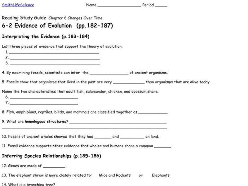 Evidence Of Evolution Worksheet For 9th 12th Grade