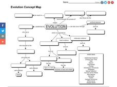 Concept Map About Evolution.Evolution Concept Map Graphic Organizer For 7th Grade Lesson Planet