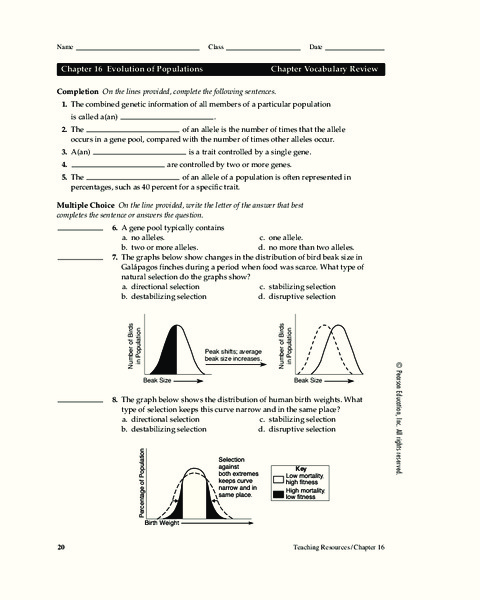 Evolution of Populations Worksheet