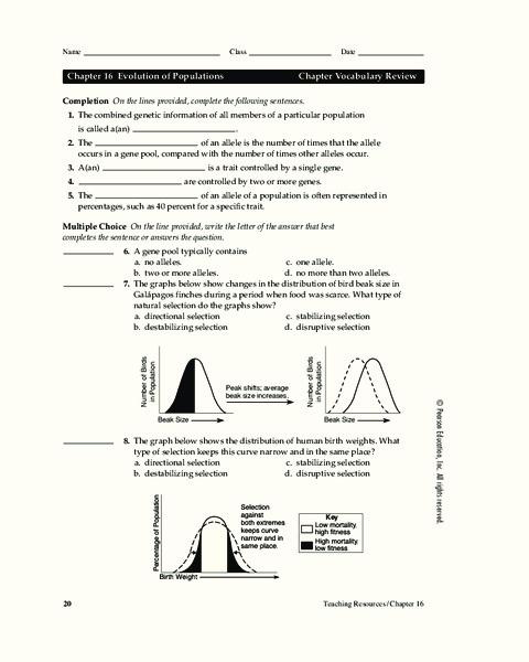 Evolution Of Populations Worksheet For 9th Higher Ed Lesson Planet