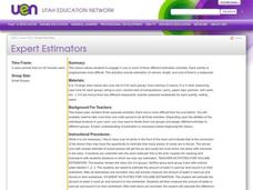 Expert Estimators Lesson Plan