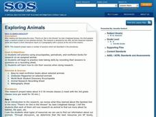 Exploring Animals Lesson Plan