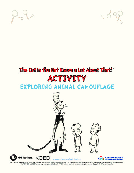 Exploring Animal Camouflage Lesson Plan