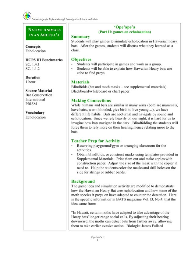 Games on Echolocation Lesson Plan